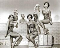 1955 GOLDWYN GIRLS Beautiful Actresses Chorus Girls - Guys and Dolls Promo Photo