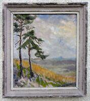 Original Gemälde Impressionismus Öl Leinwand, signiert 1957, gerahmt, Landschaft