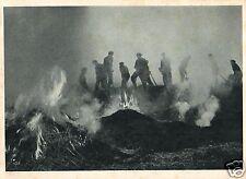 8562/ Foto AK, Allzeit bereit, ca. 1940