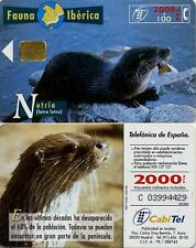 2000 PTA. Fauna Ibérica. Nutria. CabiTel.