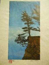 Pine Fir Tree Forest Edge Woodblock Print Moku Hanga Japanese Washi paper signed