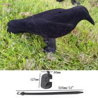Garden Hard Plastic Black Crow Hunting Decoy Raven Halloween Prop 13x11x38cm