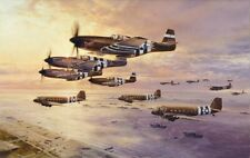 D-Day The Airborne Assault by Robert Taylor Signed by D-Day Mustang Pilots
