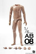 ZCWO 1:6 Muscular Articulate Action Figure Male Body AB08 ZC-187