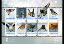 Netherlands 2017 - Winter Birds souvenir sheet mnh