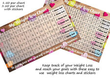 weight loss chart 10 stone  with 2 sheet of stickers weigh loss journey