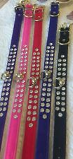 "MIRAGE VELVET Dog COLLAR 2 ROW DIAMANTE CRYSTAL USA 10"" 12"" & 14"" LONG X 1.5CM"