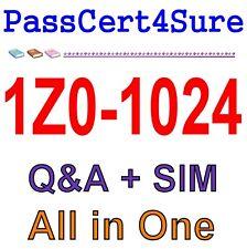 Best Exam Practice Material for 1Z0-1024 Exam Q&A Pdf+Sim