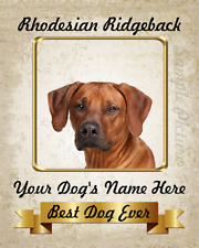 Rhodesian Ridgeback Personalized Art Home Decor Printed on 8x10 Photo