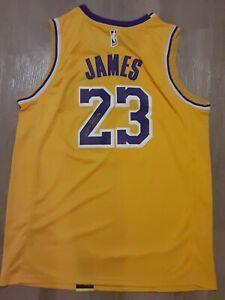 LEBRON JAMES AUTOGRAPHED SIGNED NIKE NBA SWINGMAN LAKERS BASKETBALL JERSEY RARE!