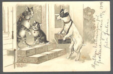 Dogs, Dog Salesman Arriving a Cat's House, Cute Old Embossed Postcard 1904
