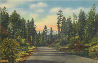 Linen Postcard AH B822 1958 Scenic Highway 70 Mescalero Apache Indian Roswell NM