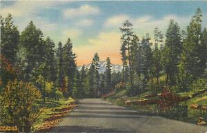 Linen Postcard B822 1958 Curteich Highway 70 Mescalero Apache Indian Roswell NM
