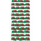 Uomo E Donna Buff Originale Multifunzione Copricapo Sciarpa - Gallese Bandiera
