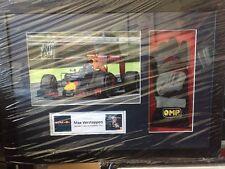 Max Verstappen mano firmado F1 OMP guante Enmarcado Red Bull pantalla cert. de autenticidad