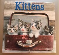 NEW Kittens 2019 Calendar Ephemera