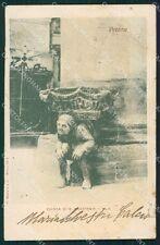 Verona Città Chiesa Sant'Anastasia cartolina XB2614