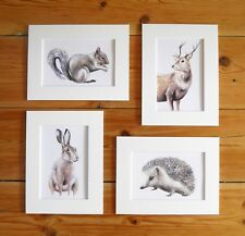 Hare Hedgehog Stag Squirrel, Wildlife 4 Set Prints paintings Sarah Featherstone