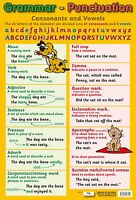 A2 Grammar Poster/ educational / learning / literacy / language