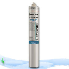 Everpure i2000 Water Filter Cartridge EV9612-27 for Ice Machines