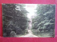 Old Postcard MA Abington Entrance to Grove