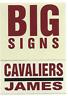 2003-04 Fleer Platinum Big Signs 7 LeBron James Rookie Insert Cavs Heat Lakers
