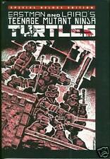 Rare Teenage Mutant Ninja Turtles Hardcover HC HB TMNT