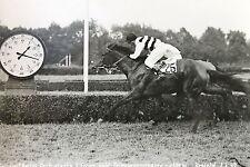19554 Foto Promemoria CORSA Krefeld 1200 M 1.6.1949 Galatea Cavaliere ospite cavallo