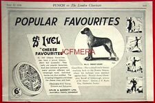 1938 St. IVEL Cheese Advert: GREAT DANE - 'Popular Favourites' Print Ad