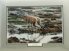 Alaskan Sandhill Cranes 1987 Ducks Unlimited POY Cathy Kincade Art Print Alaska
