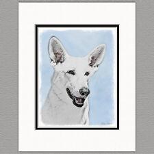 White Shepherd German Blanc Berger Suisse Original Art Print 8x10 Matted 11x14