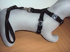 Autosicherheitsgeschirr  Hundegeschirr mit Kurzführer schwarz Gr. XS von Karlie