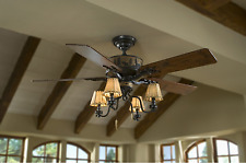 Hunter 59006 52 inch Ceiling Fan with Light Kit - Brown