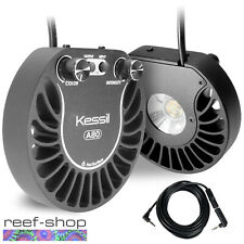 2x Kessil A80 Tuna Blue LED Lights & Link Cable Bundle 15 Watt Nano Reef Lights