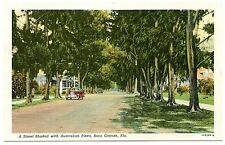 B0106 Boca Grande FL Street shaded w/ Australian pines Autos 1931 Linen PC Teich