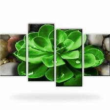 Steine Tropfen Natur Pflanze Bild Bilder Wandbild Kunstdruck 4 Teilig