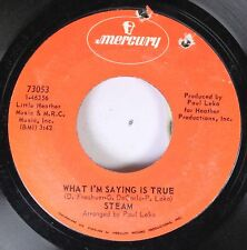 Rock Nm! 45 Steam - What I'M Saying Is True / I'M The One Who Loves You On Mercu