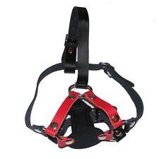 TheSexShopOnline - Bondage Novelty Rubber Insert Gag Head Harness Restraint