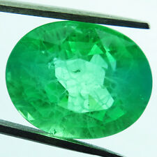 12.80ct MARVELOUS COLOMBIAN GREEN EMERALD CHATHUM LOOSE OVAL 12X14.5MM