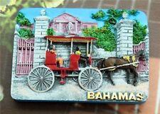 3D Resin Fridge Magnet Craft Travel Souvenir Memorabilia-Bahamas