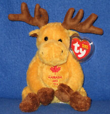 TY DOMINION the CANADIAN MOOSE BEANIE BABY - MINT with MINT TAG