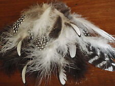 ELEGANT COLLECTION OF BLACK/ WHITE FEATHERS . Hats/craft/hobby