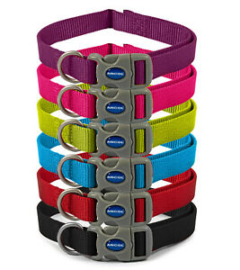 Ancol Viva Adjustable Dog Collars available in Blue, Red, Purple, Pink and Black