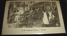 In The Argonne Forest France Overseas Signal Corps WWI Postcard Unposted