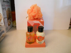 The Body Shop MANGO 3 Piece Travel Gift Set Shower Gel, Lotion NEW IN CUBE BOX