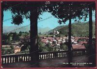 COMO PELLIO INTELVI 07 PELLIO SUPERIORE Cartolina FOTOGRAFICA viaggiata 1964