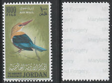 Jordan (1439) 1964 Kingfisher 1000f -  a Maryland FORGERY unused