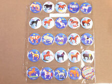PONY IN MY POCKET POGS COMPLETE POG SET OF ALL (24+1 SLAMMER) WITH POG PAGES
