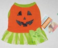 Martha Stewart Pumpkin Tutu Dress Medium Halloween jack o lantern Dog costume