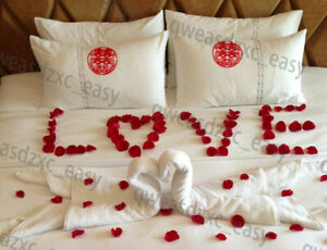 100PCS RED SILK ROSE PETALS FLOWER CONFETTI WEDDING ENGAGEMENT DECORATION G0A W